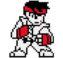 Ryu (sprite) Photographic Print