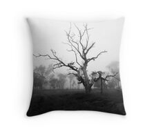 High Country Mist Throw Pillow
