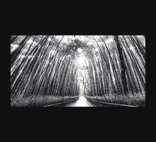 Trees by Bob0490