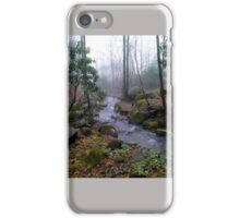 Out Doors Streaming Along iPhone Case/Skin