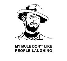 My Mule don't like people laughing Photographic Print