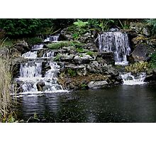 Oregon Gardens  Photographic Print