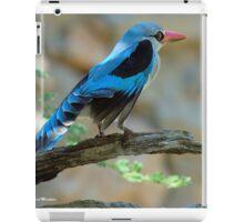 WOODLANDS KINGFISHER – Halcyon senegalensis - BOSVELDVISVANGER iPad Case/Skin