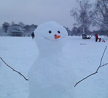 Frosty the snowman by rualexa