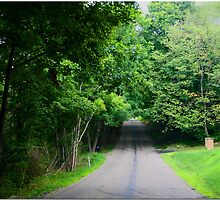 Byway by Chet  King