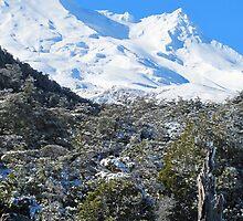 Mt Ruapehua  by gdickson