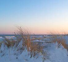 Winter Beach by Michele Simon