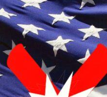 American Flag with Dynomite Sticker