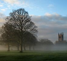Sunday morning in the park by Steve  Wallace