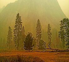 Rim Fire in Yosemite by cawdreychris