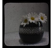 Daisy TTV Photographic Print
