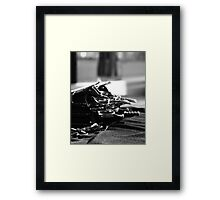 Gleam Framed Print