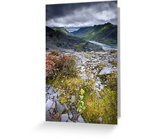 North Wales : Slate & Flowers Greeting Card