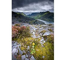 North Wales : Slate & Flowers Photographic Print