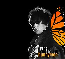 echo and the bunnymen by youngkinderhook