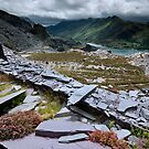 north Wales : Slate & Flowers 2 by Angie Latham