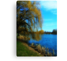 My Weeping Willow Tree ©  Canvas Print