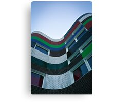Coloured Flow Canvas Print