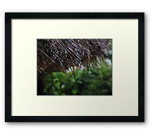 Zen... Framed Print