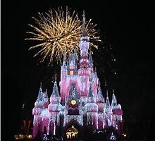 Disney Fireworks by madisoncenter