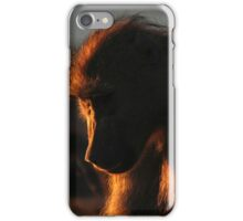 Chacma Baboon iPhone Case/Skin