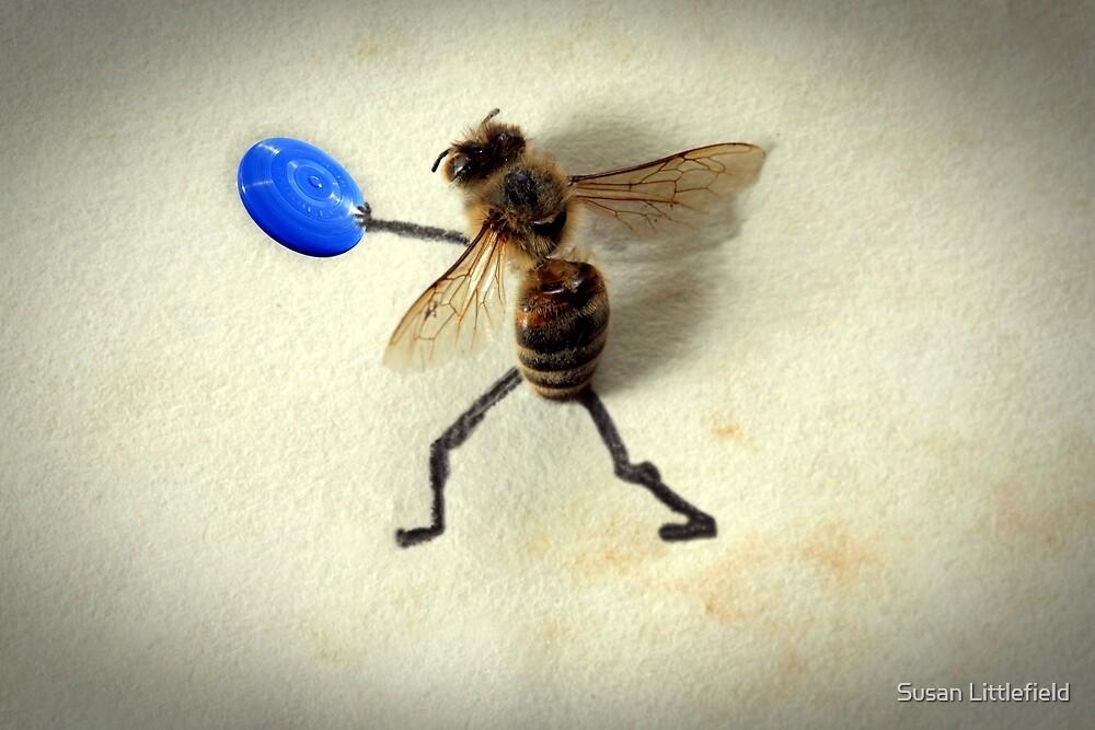 Frisbee by Susan Littlefield