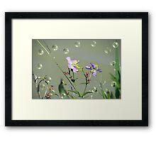 Tiny Beauties Framed Print