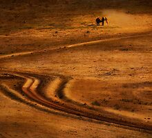 Lone Elephant in the Dust, Amboseli National Park,Kenya. Africa. by photosecosse /barbara jones
