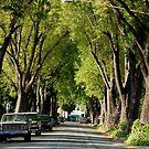 I love Pasadena by loiteke