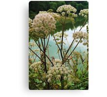 Summer by the River Canvas Print