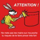 Metro Rabbit by Bernat Comes