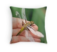 Broad-bodied Chaser on the photographer's hand A Throw Pillow