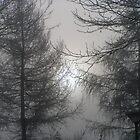 Haze by patjila