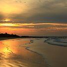 Peggs Beach , Nor West Tasmania , Australia by phillip wise