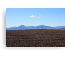 Black soil plains Canvas Print