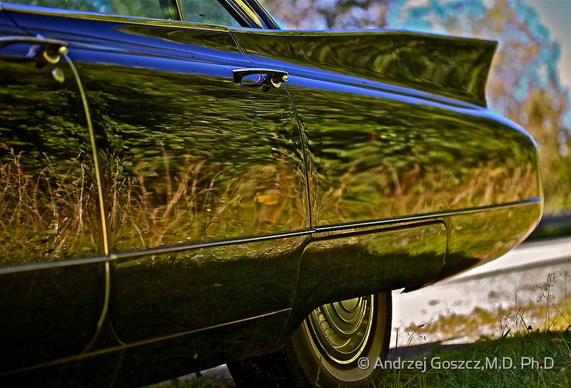 Elvis Presley  -  Love me tender  -  Cadillac . Brown Sugar Story.  Views ( 276) Favorited by (3) Thx!  Dear friends! by © Andrzej Goszcz,M.D. Ph.D