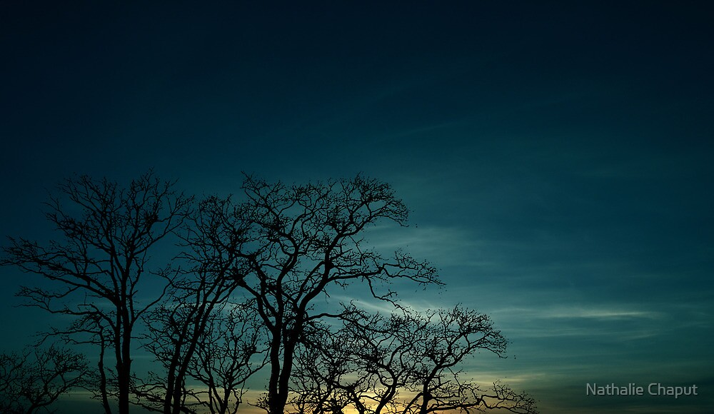 Sunset by Nathalie Chaput