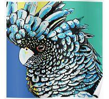 Black Cuckatoo Poster