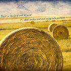 Kansas Hay Bales by JulieLegg