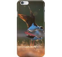 Black-winged stilts mating iPhone Case/Skin