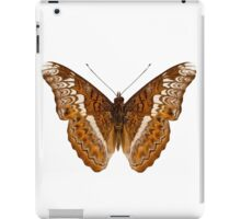 Admiral limenites butterfly iPad Case/Skin