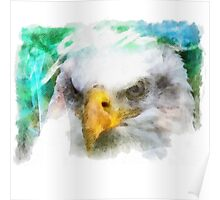 Abstract Bald Eagle Poster