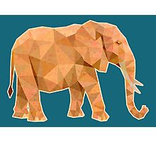 Elephant lowpoly Photographic Print
