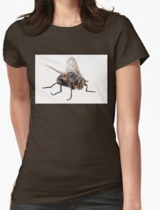 Blue bottle fly species calliphora vomitoria isolated on white background Womens Fitted T-Shirt