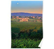 San Gimignano Vineyards Poster