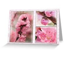 Spring triptych in pink Greeting Card
