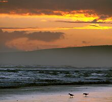 Sunset over Encounter Bay II by pablosvista2