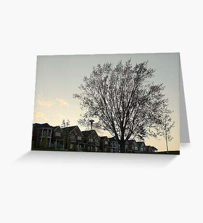 Houses for Courses Greeting Card