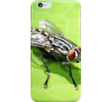 Flesh Fly iPhone Case/Skin