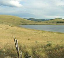 Prairie Lake by Robbie Robinson